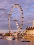 London eye Ferris Wheel Stock Images