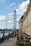 London Eye and London County Hall in London UK Stock Photography