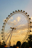 London Eye, London, England, the UK. Royalty Free Stock Photography