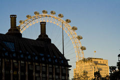 London Eye in sunset Royalty Free Stock Photography