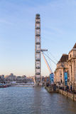 London Eye at Sunset Royalty Free Stock Image