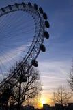 London Eye at Sunset Royalty Free Stock Photography