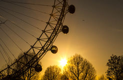 London Eye at Sunset Stock Images