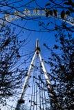 London Eye through trees Stock Image