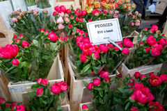 London Förenade kungariket - April 17, 2015: söndag för Columbia vägblomma marknad Gataaffärsmän säljer deras materiel Royaltyfria Foton