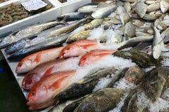 London Fish Market Royalty Free Stock Image