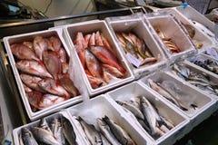 London Fish Market Royalty Free Stock Photos