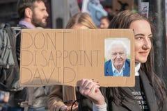 London, Großbritannien - 15. April 2019: Das Mädchen, das eine Fahnenlesung hält, enttäuschen nicht David Löschungs-Aufstand stockfotos
