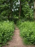 London Gunnersbury parkerar engelska som landskapet parkerar Arkivbild