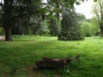 London Gunnersbury parkerar engelska som landskapet parkerar Royaltyfri Fotografi