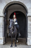 London horse guard Stock Images