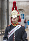 London horse guard Stock Photo