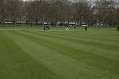 London, Hyde Park, freshy gemähtes Gras Stockfotos