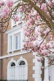 London i blom Fotografering för Bildbyråer