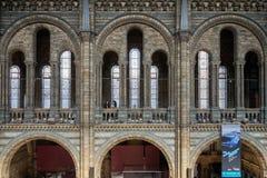 LONDON - JUNI 10: Folk som undersöker det nationella historiemuseet Arkivfoton
