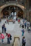 LONDON - JUNI 10: Folk som undersöker det nationella historiemuseet Arkivbilder