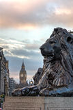 London lion Stock Image