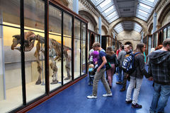 London museum Stock Images