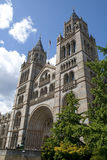 London muzeum historii anglii naturalne Fotografia Stock