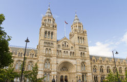 London Natural History Museum royalty free stock photos