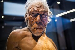 London. Neanderthal Homo adult male, based on 40000 year-old remains found at Spy in Belgium. London, UK - March 11, 2018: Neanderthal Homo adult male, based on stock image
