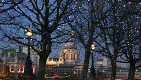 London at night. St Paul Cathedral and  trees with lamps in London at night Stock Photos