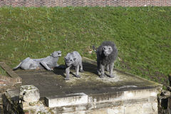 London - October 17, 2014: Lions made from wire mesh by Kendra H Royalty Free Stock Photography