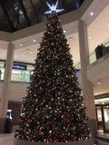London Ontario Canada. A massive Christmas tree at Masonville mall. A huge Christmas tree set up in London Ontario's biggest mall Royalty Free Stock Image