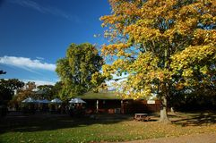 London park. Autumn London park with blu sky and trees royalty free stock photo