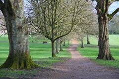 London park Stock Image