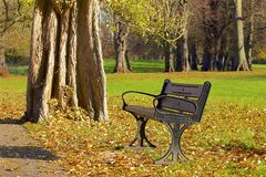 London parks in autumn, England. Beautiful colours of autumn in London parks, UK stock images