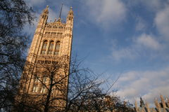 london parlament royaltyfria foton
