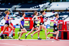 London prepares: women's 3000m  Stock Images