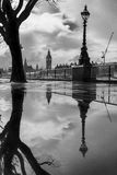 London reflections. Big Ben and trees reflected in puddles on the Southbank of the Thames Stock Images