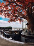 London rooftop bar views stock photo