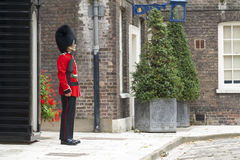 London Royal Guard Stock Photos