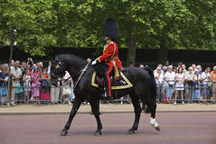 London Royal Guards Stock Photo