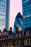 Londons Gherkin. The gherkin in the banking district of London at dusk Royalty Free Stock Photo