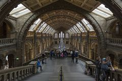 Natural History Museum. stock photography