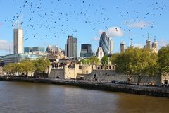 London skyline. With River Thames. Black ominous birds in the sky royalty free stock photography