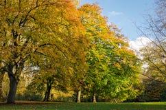 London St James Park (hösten) Royaltyfri Fotografi