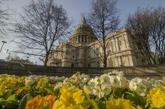London St Paul Stockbild
