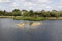 London-Sumpfgebiet-Mitte stockbilder