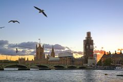 London in sunset with seagulls flying stock image