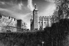 london torn Arkivbild