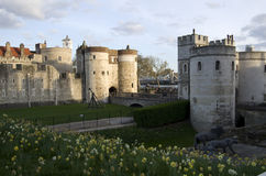 London tower. Is one of the most popular tourist attraction in London Royalty Free Stock Photography