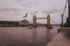 London town vibes Royalty Free Stock Photo