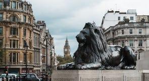 London Trafalgar Square lejon och Big Ben Royaltyfria Foton