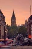 London Trafalgar Square lion and Big Ben. Tower at background Stock Image