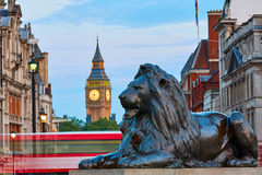 London Trafalgar Square lion and Big Ben. Tower at background Stock Photography